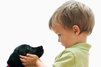 """Мама, купи мне щенка!"""
