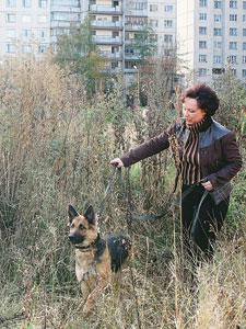 Замерзающую девочку спасла Петербурженка