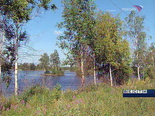 Жительница Брянской области забыла дочку на пикнике в Подмосковье