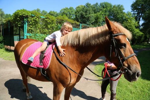 Бесплатно заниматься спортом смогут томские дети-инвалиды