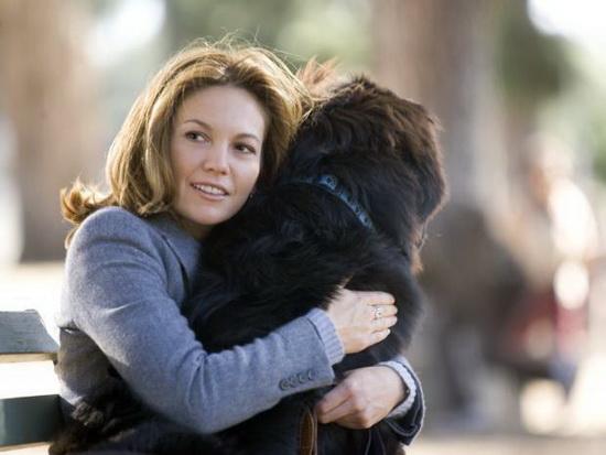 За любовь к собакам или к детям отвечает один и тот же гормон