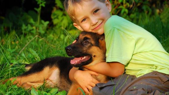 Исследование ученых: значимость взаимоотношений детей и животных
