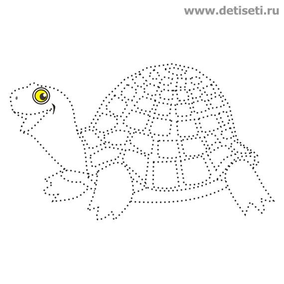 Весёлая черепаха