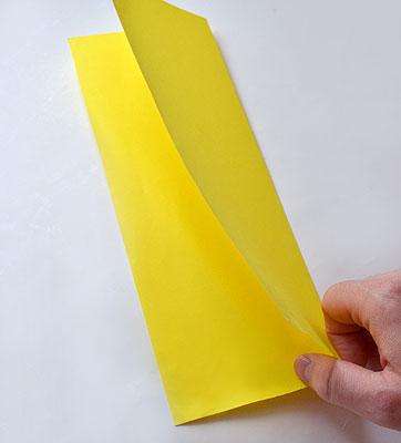 Согните лист пополам по короткой стороне и потом распрямите обратно