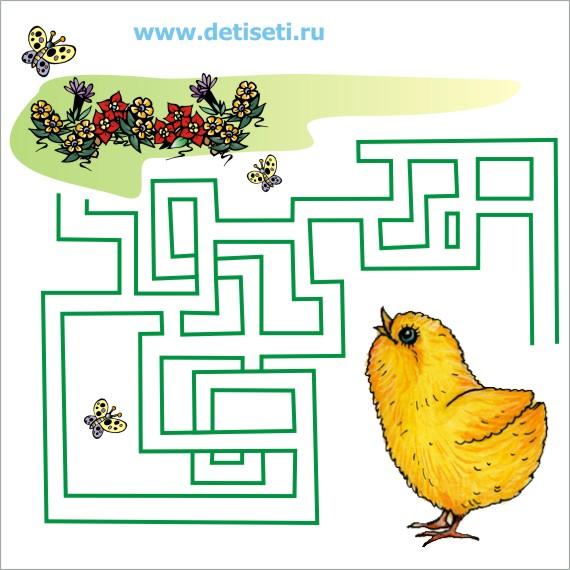 Цыплёнок – цветочная поляна