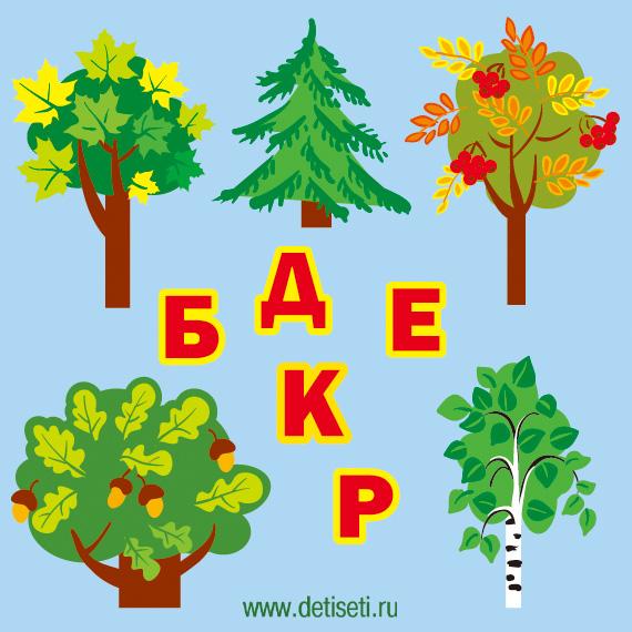 Деревья и буквы