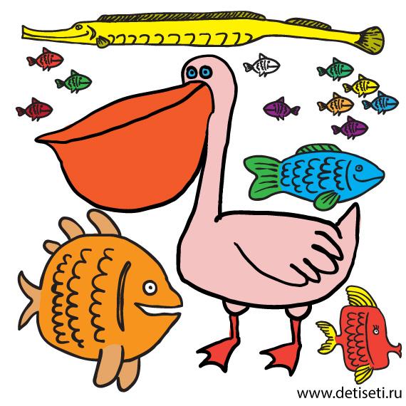 Пеликан и рыба