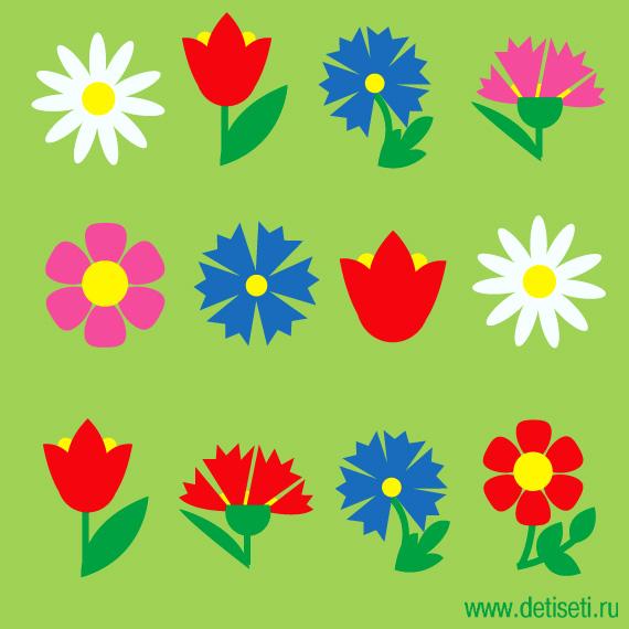 Цветочные ряды