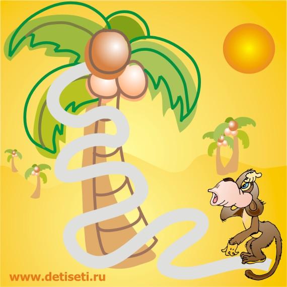 Обезьянка забирается на пальму