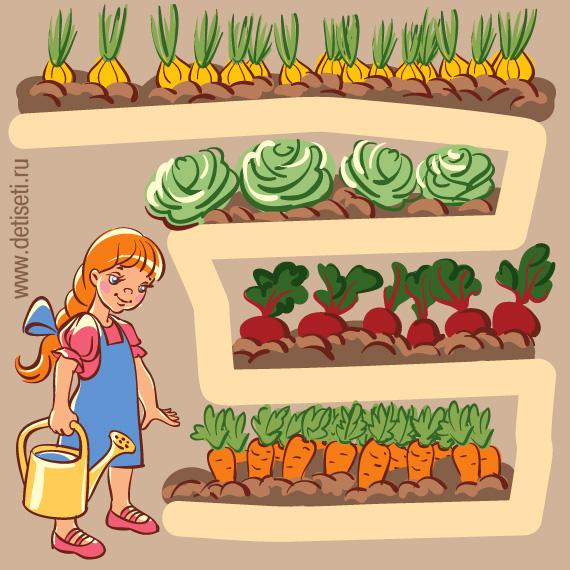Поливаем огород