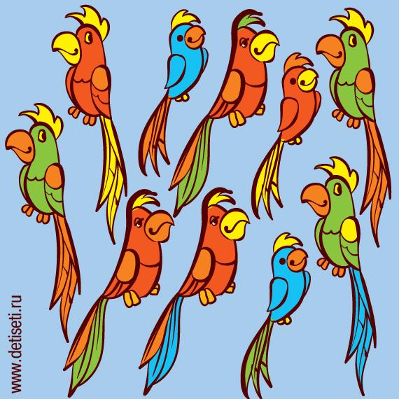 Разноцветные попугайчики